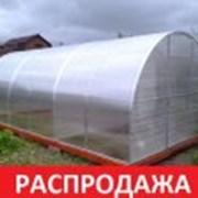 Парник Фермер. 6х3х2 м. + Поликарбонат. Гарантия. фото