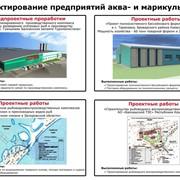 Проектирование предприятий аква- и марикультуры фото