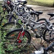 Прокат, аренда специальных велосипедов на Трухановом острове фото