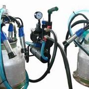 Оборудование доильное Доильное оборудование ВЕЛЕС-12 фото