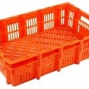 Ящик для перевозки живой птицы (открытый) фото
