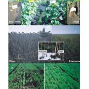 Производство средств защиты растений фото