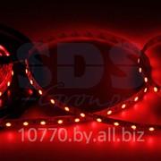 LED лента открытая, ширина 10 мм, IP23, SMD 5050, 60 диодов/метр, 12V, цвет светодиодов красный фото