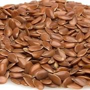 Семена Льна оптом для полеводства фото