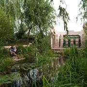 Строительство искусственного озера, водоема фото