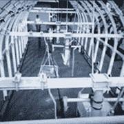 Дорога шахтная подвесная многоканатная МДК фото