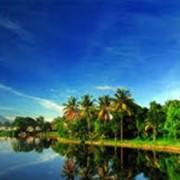 Туры в Индонезию фото