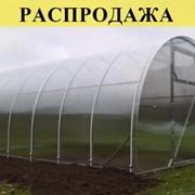 Теплицы из поликарбоната 3х4, 3х6, 3х8, 3х10 м. Доставка по РБ. Арт: 027 фото