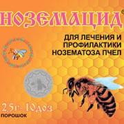 """Препарат """"Ноземацид"""" для профилактики НОЗЕМАТОЗА И бактериальных болезней пчел, 2.5 г фото"""