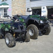 Квадроциклы ATV 110 124 см. куб., Квадроциклы в Казахстане, Мотоциклы, скутеры, мопеды, мотороллеры фото