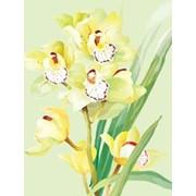 Картина стразами в 3д Желтая орхидея 40х50 см фото