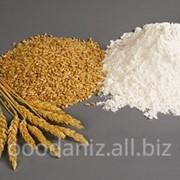 Мука пшеничная второго сорта на экспорт фото