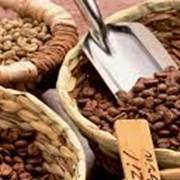Свежеобжаренный кофе Боливия фото