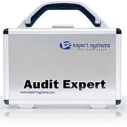 Обеспечение программное для автоматизации управления предприятием, Audit Expert – программа анализа финансового состояния предприятия фото