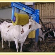 Щетки для животных. Автоматическая щетка для коров PROFI-COW фото