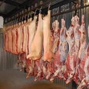 Говядина и свинина в полутушах оптом фото