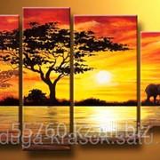 Картина по номерам Дикая Африка фото