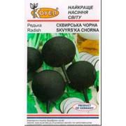 Семена редьки Сквирская черная фото