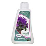 Удобрение Флорика для комнатных растений 0,3л фото