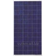 Сонячна батарея (панель) 300 Вт 24В, полікристалічна, PLM-300P-72, Perlight Solar фото