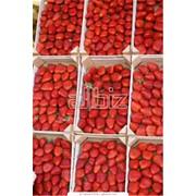 Закупка ягод, Закупка ягод, грибов, орехов и др. фото