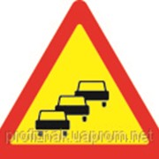 Дорожные знаки Предупреждающие знаки Заторы в дорожном движении 1.38 фото