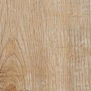 Ламинат Бежевый Luxury Elegant Floor Софора японская