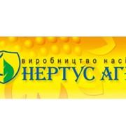 Семена подсолнечника РИМИСОЛ (CLEARFIELD) г. Нови Сад (Сербия) фото