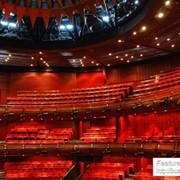 Международные конгрессы, съезды, форумы и симпозиумы: Оперный зал фото