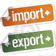 Крупный экспорт продуктов питания – БЕЗ ОТКАТОВ! фото