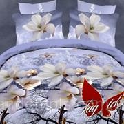 Комплект постельного белья двуспальный ранфорс Зимний сад фото