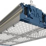 Низковольтный промышленный светильник TL-PROM 300 PR PLUS LV (Д) 24V фото