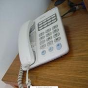 Установка городских телефонных номеров фото