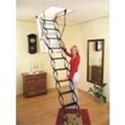 Раздвижная чердачная лестница Oman Nozycowe Termo 60x120,70x120,70x100 h290 фото
