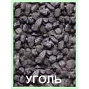 Уголь сортовой ДПК фото