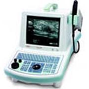 Ветеринарный узи сканер Aquila Pro фото