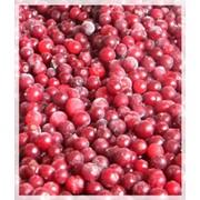 Красная смородина замороженная фото