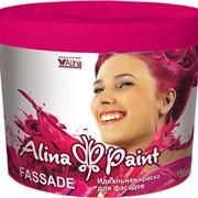 Краска водоэмульсионная фасадная Alina Paint FASSADE 20 кг фото