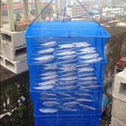 Сетка сушилка для рыбы овощная фруктовая складная  фото