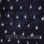 Гирлянда - сеть светодиодная 2 х 1,5м, свечение с динамикой, черный провод, белые диоды NEON-NIGHT фото