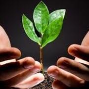 Система экологического менеджмента ISO 14001:2015 фото