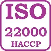 ISO 22000 - система безопасности пищевой продукции HACCP (ХАССП) фото