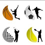 Спортивный маркетинг. Услуги спортивной индустрии. Спорт и отдых фото