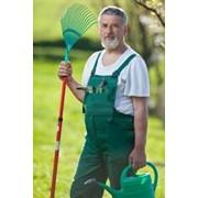 Подбор садовников. Подберем садовника. фото