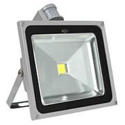 Светодиодный прожектор ZLight 40W 4000K (LED, 40 Вт, дневной белый, датчик движения) фото
