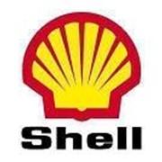 Масло гидравлическое Shell Tellus S4 VX 32 20л фото