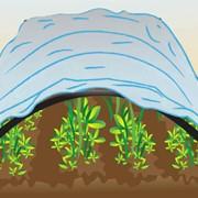 Агроволокно укрывное купить по хорошей цене. фото