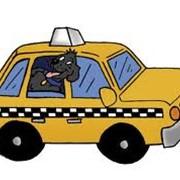 Такси тулпар фото