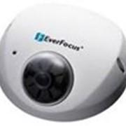 Купольная Сетевая Камера EverFocus EDN1120 фото