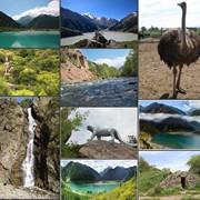 Экскурсия Озеро Иссык и Тургенское Ущелье фото